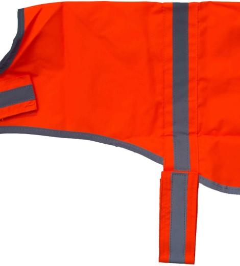 orangeseite1